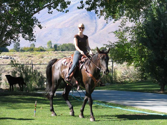 Horse and dog friendly Bishop California Cabin Self-Catering